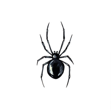 Black Widow - Tattly