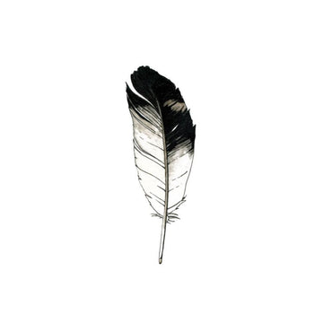 Eagle Feather - Tattly