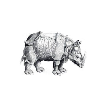 The Rhinoceros - Tattly