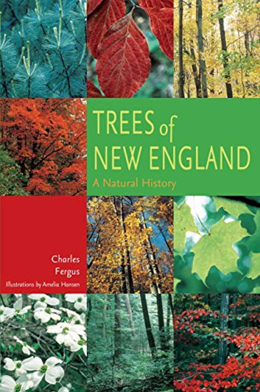 Trees of New England: A Natural History, Paperback, 1st Edition by Fergus, Charles