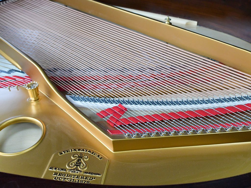 History & anatomy of the piano