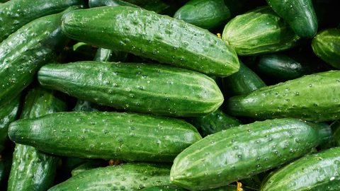 best cucumbers for moonshine pickles
