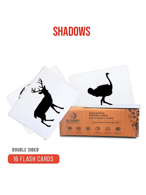 Shadows - Baby Flash Cards - 16 Cards