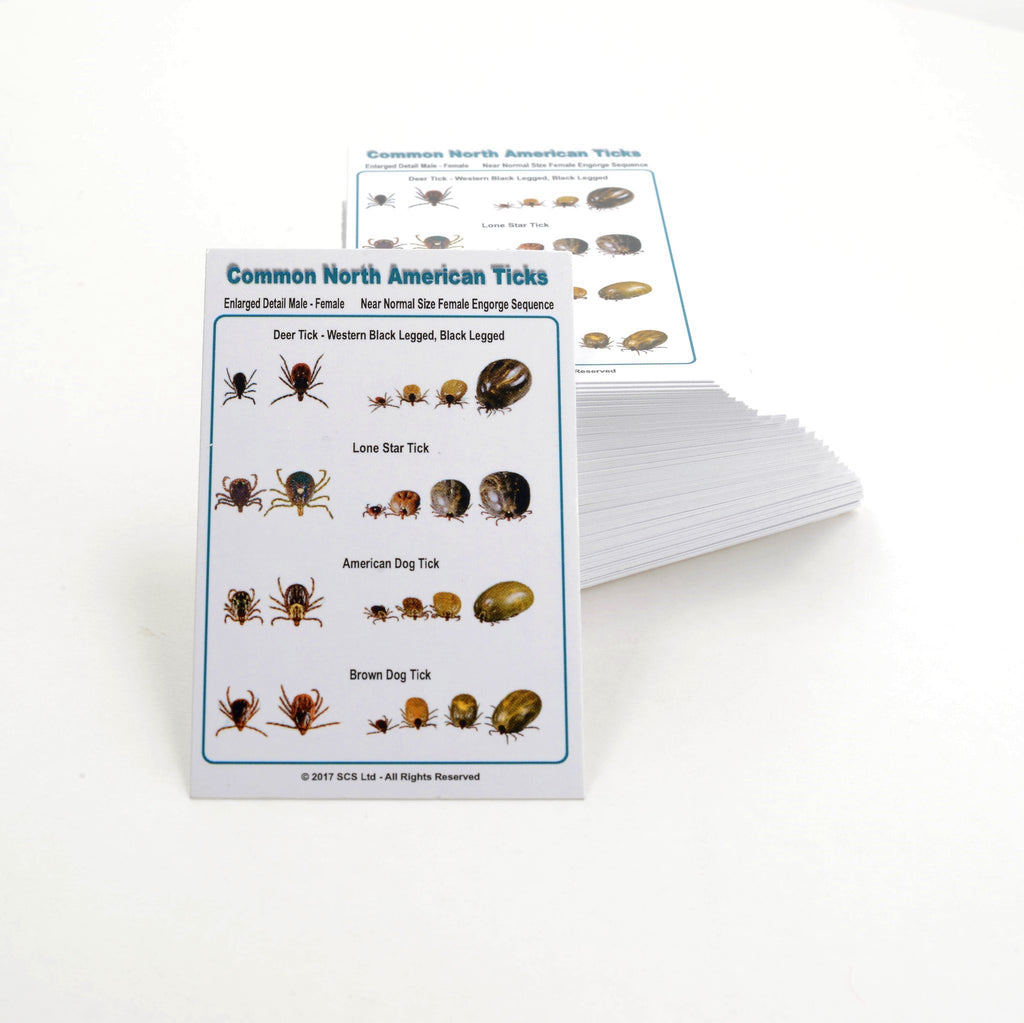 Tick ID Card - Multi-Species Common Ticks - pack of 100