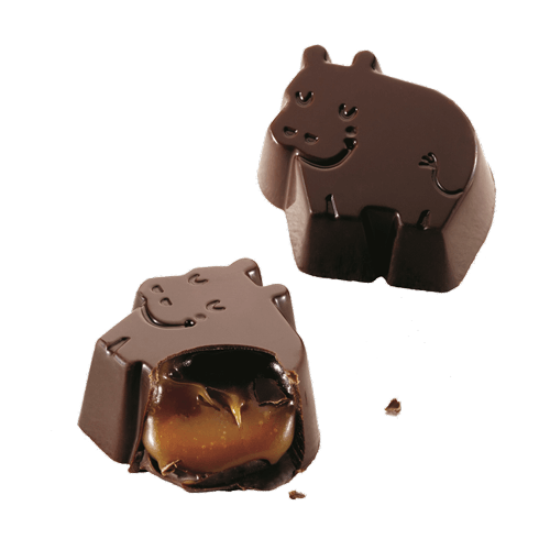 Dreamy Hippos Dark Chocolate Sea Salt Caramel
