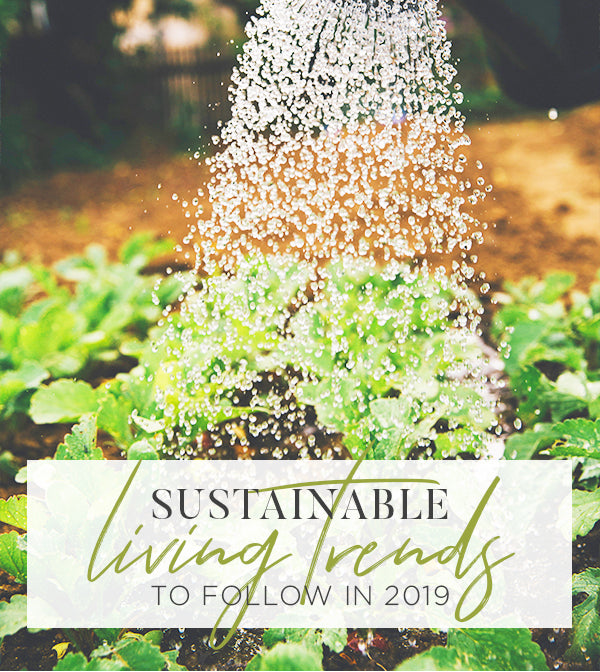 SUSTAINABLE LIVING TRENDS TO FOLLOW IN 2019