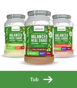 Best tasting plant-based meal replacement shakes