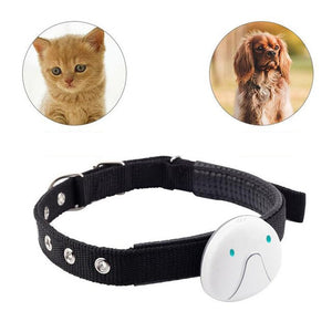 With Collar Real Time WIFI Locator Cat Dog Mini Smart Waterproof Electronic Pet GPS Tracker LBS Location Tracking Voice Call