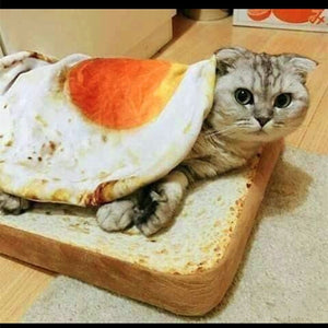 Cute Omelette pet Blankets Puppy Cat Short Plush Pet Mat Durable Warm Poached Eggs Blanket Mats For Small dog and Cat