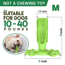 Load image into Gallery viewer, Pet Dog Toothbrush Chew Toy Doggy Brush Stick Soft Rubber Teeth Cleaning Dot Massage Toothpaste for Small dogs Pets Toothbrushes