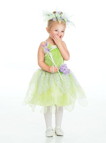 Little Adventures Tinkerbell Fairy Costume