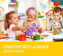 Creative Intelligence Toys