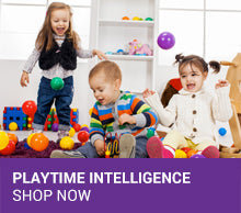 Playtime Intelligence Toys