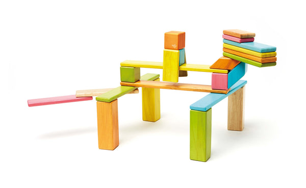 Tegu 24 Piece (Tint) | KidzInc Australia | Online Educational Toy Store
