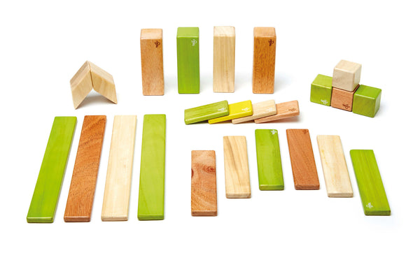 Tegu 24 Piece (Jungle) | KidzInc Australia | Online Educational Toy Store