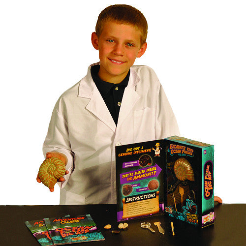 Discover with Dr Cool - Ocean Fossil Dig Kit | KidzInc Australia | Online Educational Toy Store