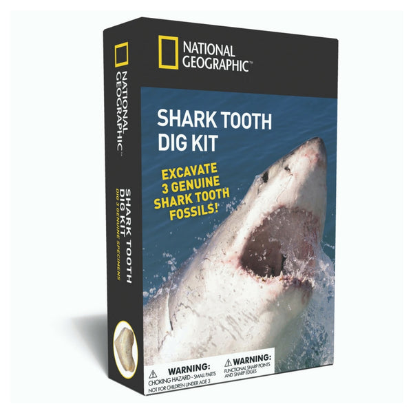 National Geographic - Shark Tooth Dig Kit | KidzInc Australia | Online Educational Toy Store