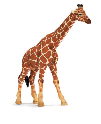 Schleich - Giraffe Female | KidzInc Australia | Online Educational Toy Store
