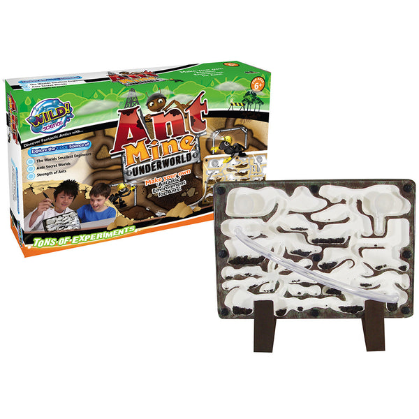 Wild Science - Ant Mine | KidzInc Australia | Online Educational Toy Store