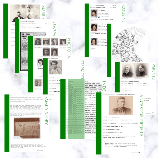 Deluxe 200 Page Family History Bundle - Green (Digital Download)