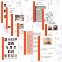 International Deluxe 200 Page Family History Bundle - Orange (Digital Download) - Family Tree Notebooks