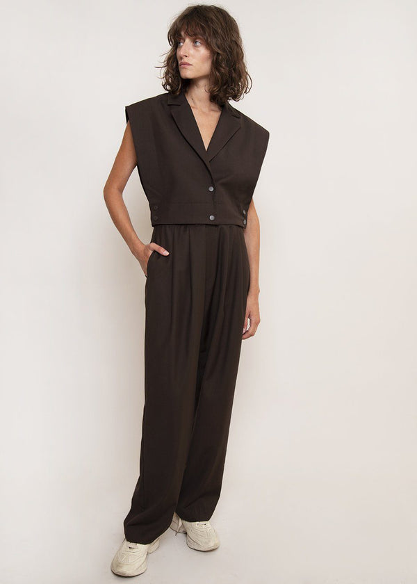 Paperbag Pleat Front Pants in Dark Chocolate