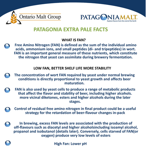 Patagonia Extra Pale. Whole