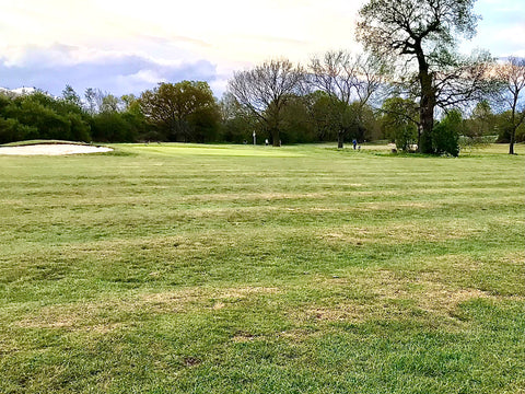 The 'waves' on the old 17th fairway at Richmond Park Golf Club