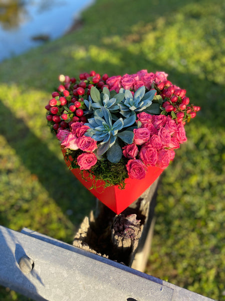 Valentine's Succulent Heart Lovers