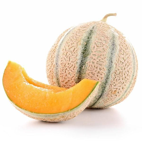 MELON CHARENTAIS - CAL9 OU CAL 12 Origine France - au kg