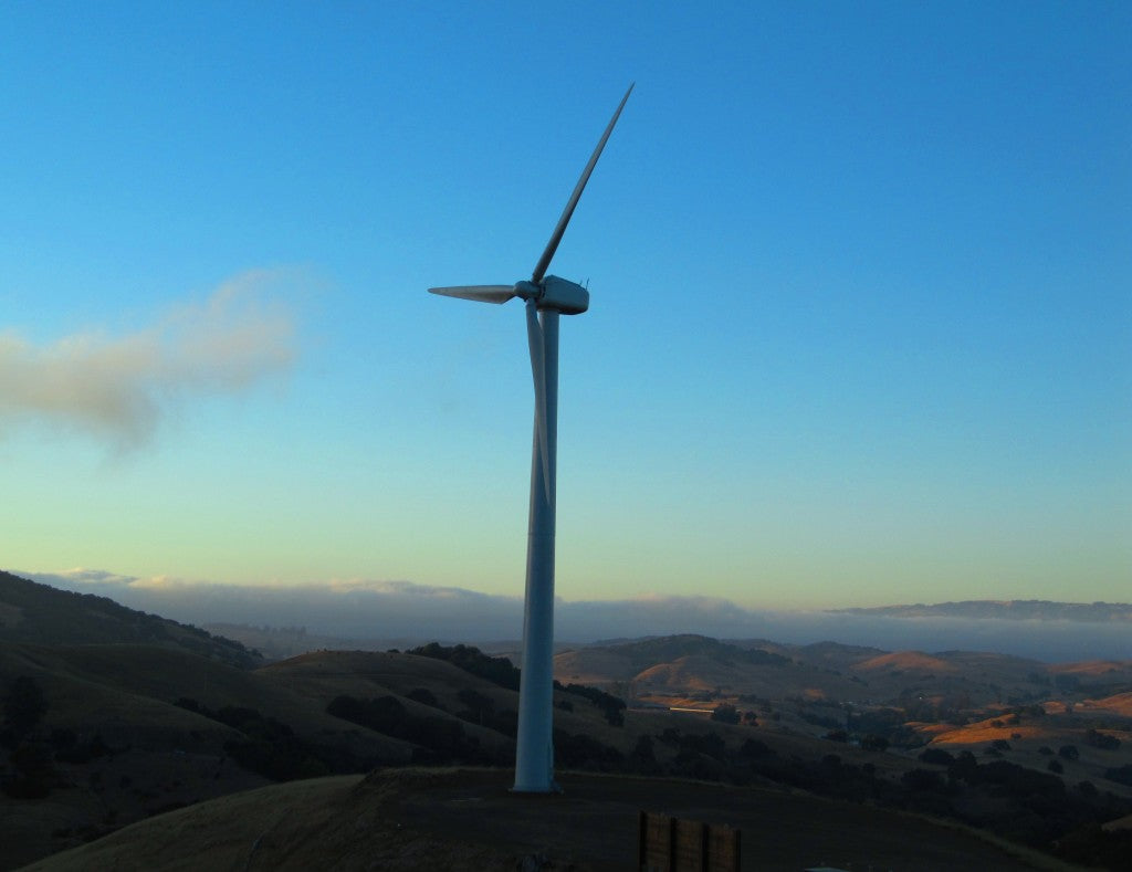 The Windmill & Sustainability