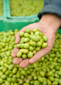 green olives in hand