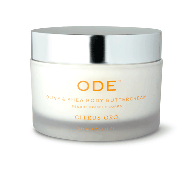 olive and shea body buttercream citrus oro in a jar
