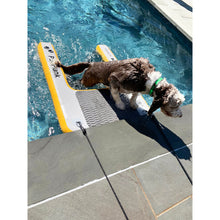 Load image into Gallery viewer, Platform - Solstice Inflatable Pup Plank Platform Medium 33424