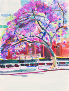 'Jacaranda and Bus Stop' - tibazi fine art