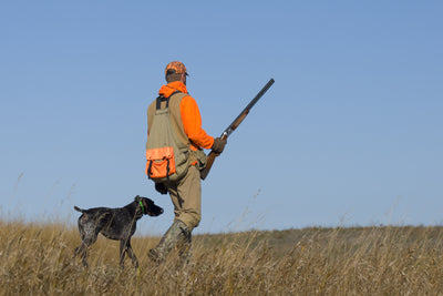 Tips on Planning a Pheasant Hunt