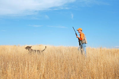 Interested in hunting? Take an online hunter education class!