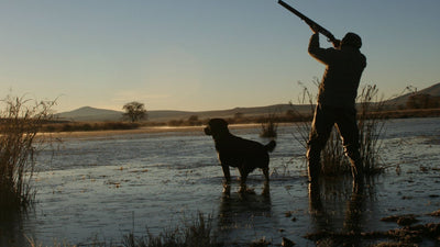 Complete Waterfowl Package