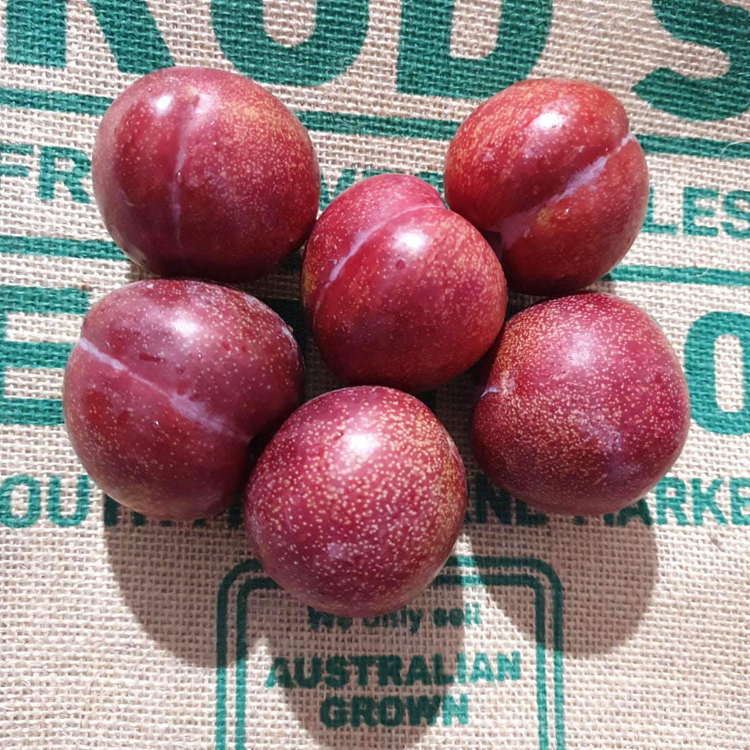 Plum- Blood ,Red flesh( 500g ) Special