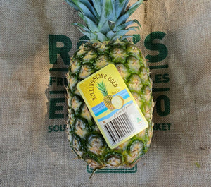 Pineapple- Gold Large