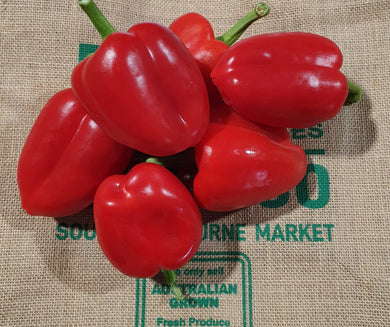 Capsicum Red -1kg value pack (medium)