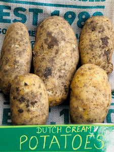 Potatoes- Dutch Cream (each)
