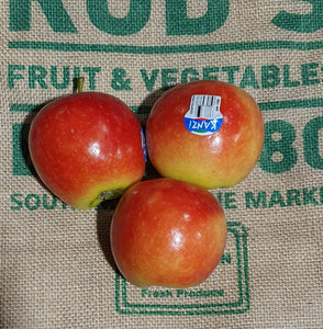 Apples, Kanzi (each) NEW SEASON