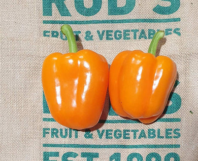 Capsicum, orange (each)
