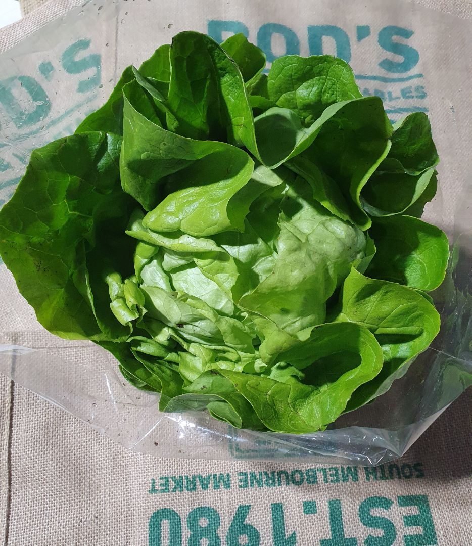 Butter lettuce (each)