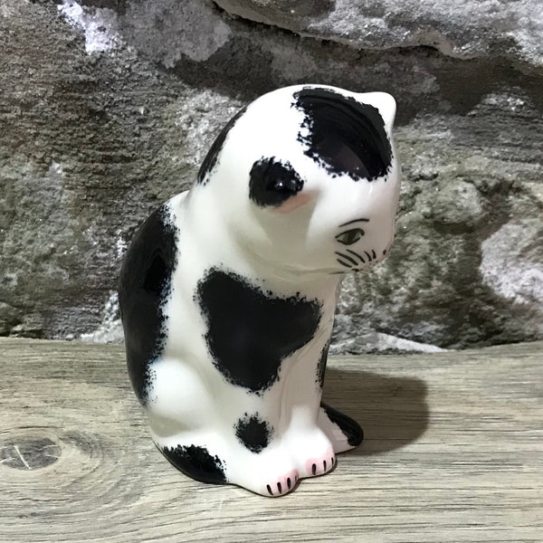 Black and White Small Thinking Cat