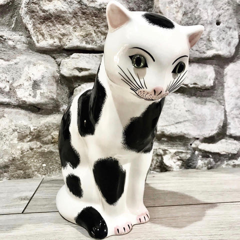Black and White Medium Thinking Cat