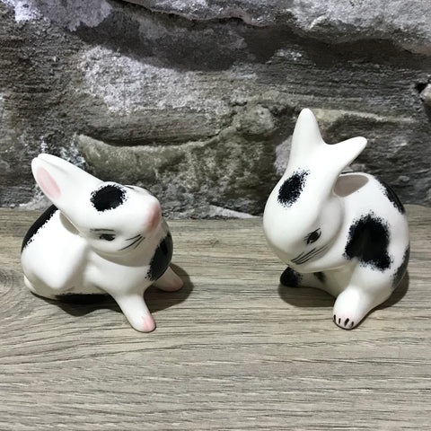Black and White Tiny Rabbit