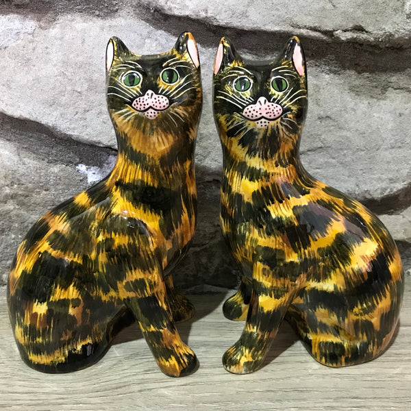 Tortoiseshell Small Cat