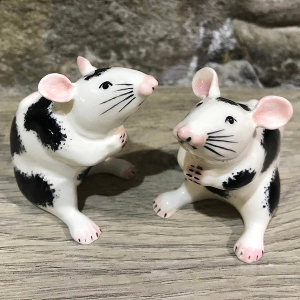 Black and White Mouse